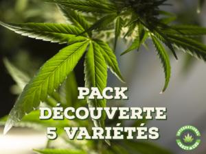 pack découverte cbd